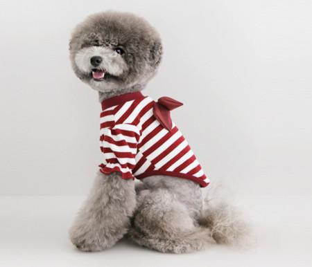 강아지옷/스트라이프리본니트-버건디