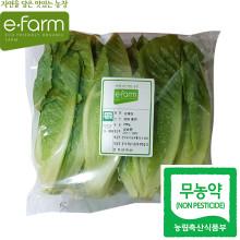 [이팜] 무농약 포기 로메인(250g)