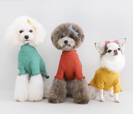강아지옷/ EVERY T – green,red+orange,mustard / 에브리 티-그린,레드오랜지,머스타드