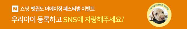 펫윈도 어메이징 페스티벌
