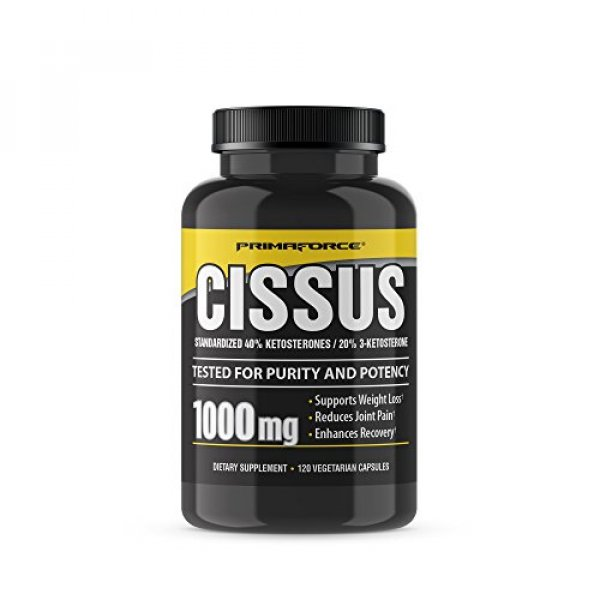 오케이샵 해외 PrimaForce Cissus Supplement 120 Count 1000mg Capsules – Supports Weight Loss/Reduces : 오케이샵3420