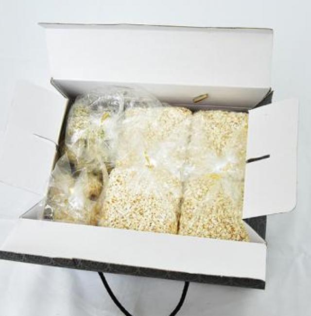 청룡-찹쌀과즐강정 [1kg]